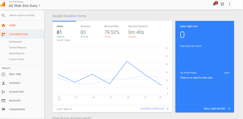Integrating Sellfy with Google Analytics