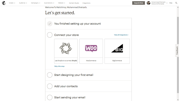 MailChimp interface