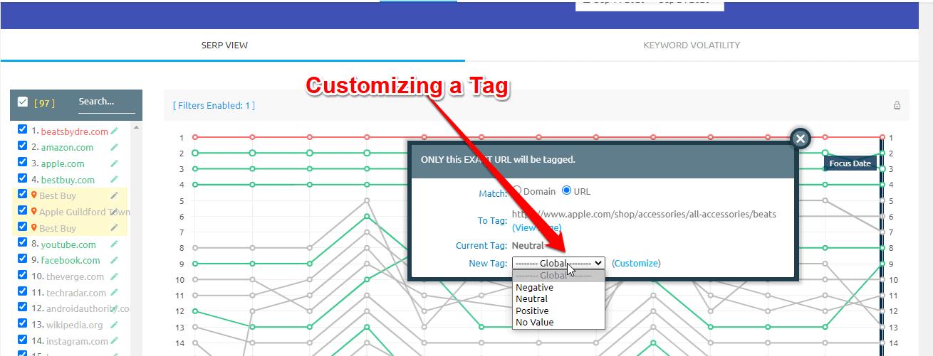 Adding custom tags with SERPWoo