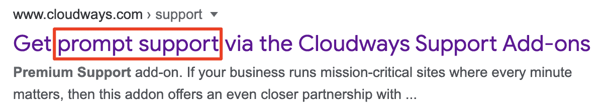 Cloudways premium support
